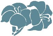 sanxulian-flores-azul